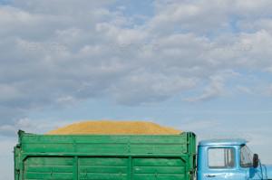 grain-transportation